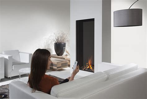 sky  element vertical direct vent gas fireplace
