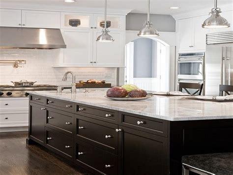 black  white kitchen cabinets