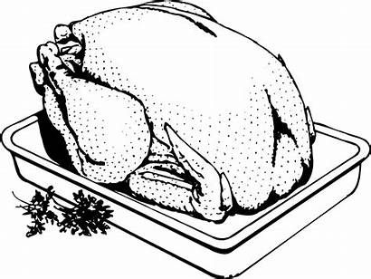 Turkey Pan Cooking Illustration Clipart Frozen Deals