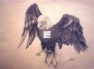 Native American Drawings Of Eagles | www.pixshark.com ...