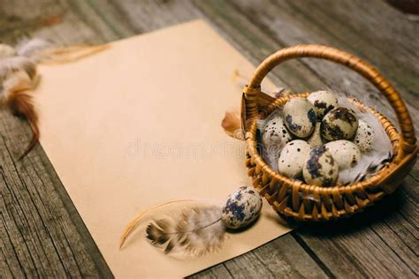 1,090 paper quail eggs box products are offered for sale by suppliers on alibaba.com, of which paper boxes accounts for 8%, packaging cup, bowl there are 290 suppliers who sells paper quail eggs box on alibaba.com, mainly located in asia. Closeup Quail Eggs Inside Of Little Basket On Sheet Of ...