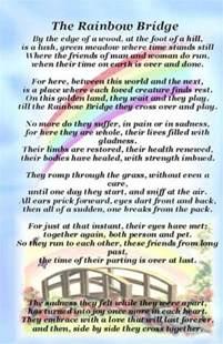 the rainbow bridge poem for cats rainbow bridge cat pet bereavement graveside memorial