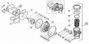 Premier Renegade Spa Pump Parts