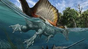 This is the only known swimming dinosaur | Science | AAAS