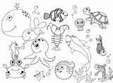Coloring Pages Water Animals Ocean Printable Getcolorings Pictu sketch template