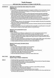 Computer Skills In Resume Sample Project Manager Office Resume Samples Velvet Jobs
