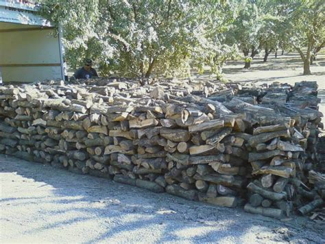 almond wood steve sims almond firewood free delivery in san francisco bay area