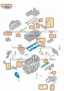 New Oem Engine Gasket Kit 2013 Ford Fusion Escape 1 6l