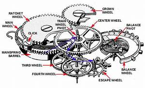 Mechanical Watch Movement Diagram Sketch Coloring Page
