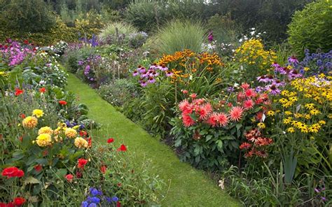 How To Create A Herbaceous Border On A Budget
