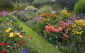 Cottage Garten Anlegen : top 10 plants for a modern cottage garden david domoney ~ Markanthonyermac.com Haus und Dekorationen