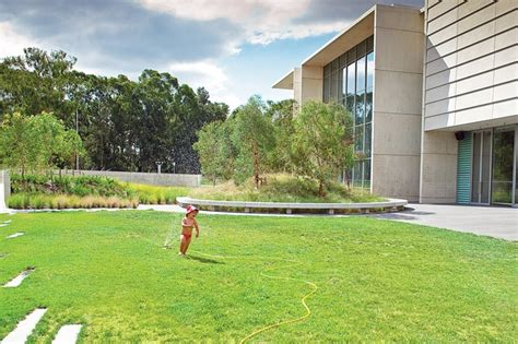 Australian Backyard - nga australian garden from two perspectives architectureau