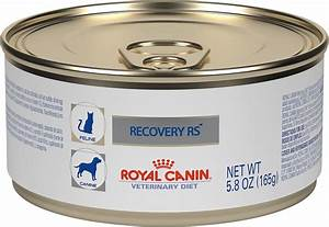 Royal Canin Bulldog : royal canin veterinary diet recovery rs canned dog cat food 5 8 oz case of 24 ~ Frokenaadalensverden.com Haus und Dekorationen