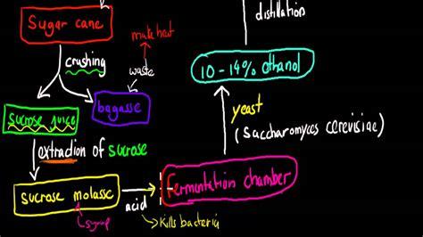 production  ethanol  sugar cane hsc chemistry youtube