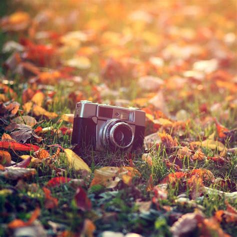 Aesthetic Fall Themed Desktop Backgrounds by Fall Aesthetic Wallpapers Top Free Fall Aesthetic