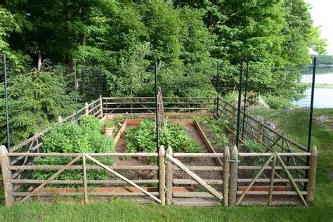 deer fence design ideas deer fencing ideas landscape traditional with vegetable garden wood fence garden design