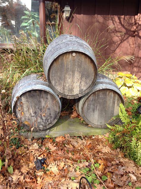 images tree liquid wood vintage leaf trunk