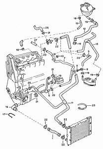 2001 Vw Jetta Coolant System Diagram