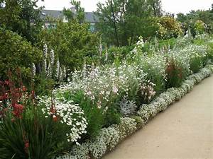 Arbuste Fleuri Toute L Année. arbustes fleuris toute l ann e jardins ...