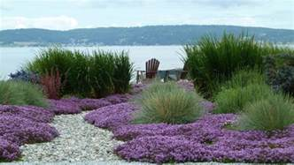 Pink And Purple Bedroom Decor by Ornamental Grass Garden Ideas Landscape Beach Style With