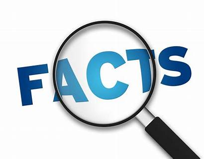 Facts Need Know Tax Important Companies Software