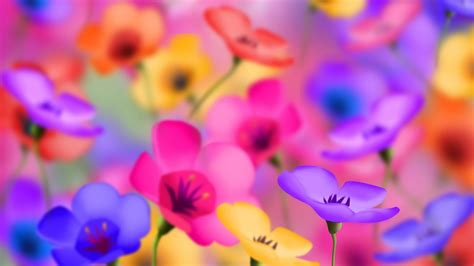 bright flowers pictures bright flowers hd wallpaper 1920x1080 4853