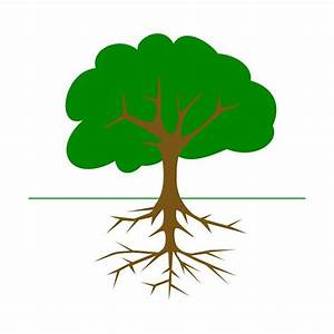 Label Tree Parts With An Interactive Science Bulletin
