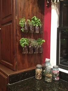 Kitchen herb garden garden stuff pinterest for Kitchen herb planters