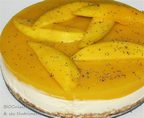 plan de cuisines bavarois mangue photo de desserts biocuisines ses nutriments