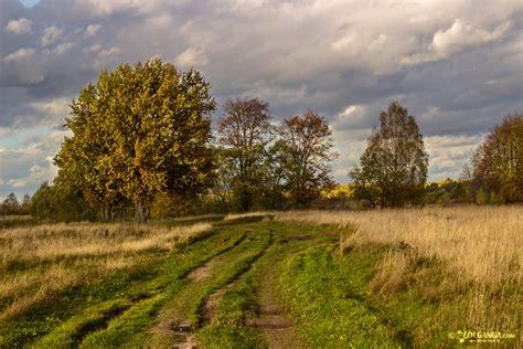 volganga nature russian autumn golden russia dressed river