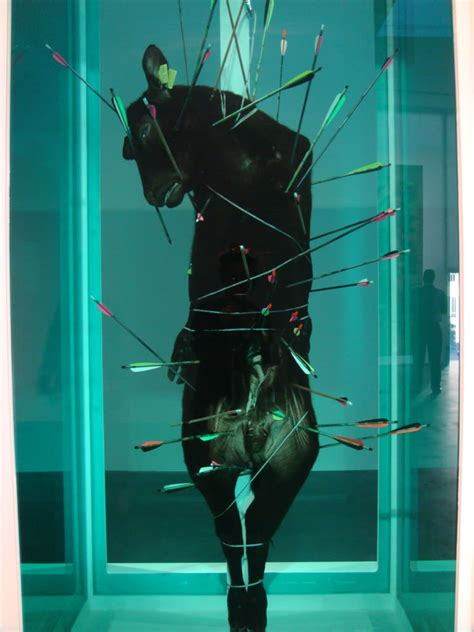world youth alliance solidarity  damien hirst