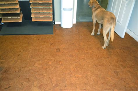 cork flooring and dogs resilient soundproofing material autumn ripple cork flooring options