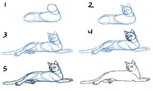 how to draw a realistic cat savanna williams how to draw cat bodies in poses