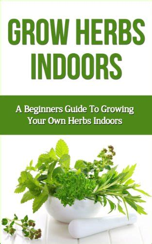 grow herbs indoors a beginners guide to growing your own