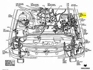 2004 Ford Explorer Ed Bauer Fuse Box Location  Ford  Auto Fuse Box Diagram