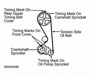 Service Manual  Diagram To Install Serpentine Belt 1989