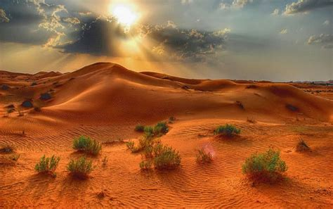 Sunlight Desert Wallpapers  Sunlight Desert Stock Photos