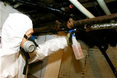 asbestos removal caution  costs