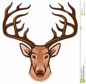 Pin Download Buck Deer In Velvet Desktop Wallpaper The ...