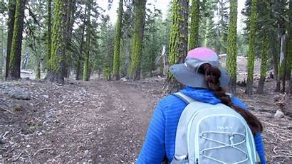 Hiking Geared Again Road