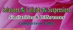 Compare True Solution  Colloids And Suspension