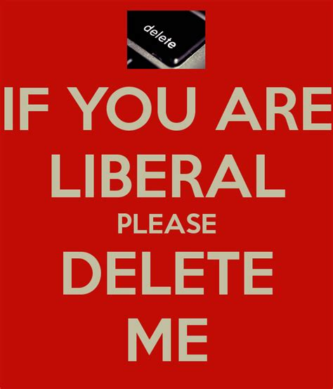 If You Are Liberal Please Delete Me Poster  James  Keep Calmomatic