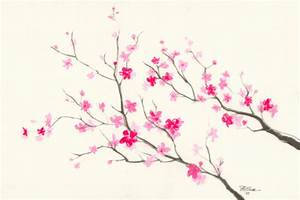 Cherry Blossom Flower Pencil Drawing