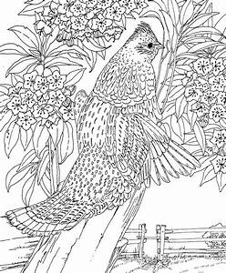 Printable Difficult Coloring Pages Coloring Home