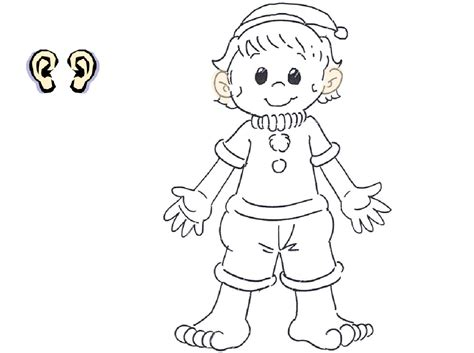 body parts coloring pages  preschool  getcolorings