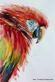 Parrot Bird Watercolor Paintings