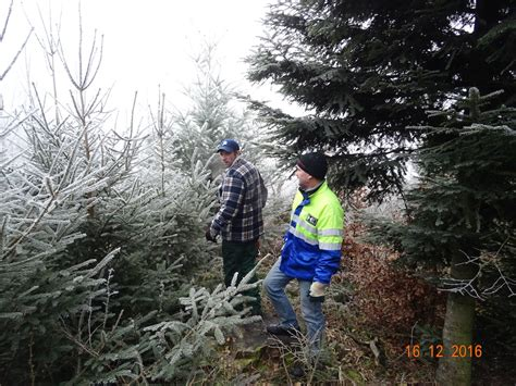 best 28 weihnachtsbaum schneiend weihnachtsbaum