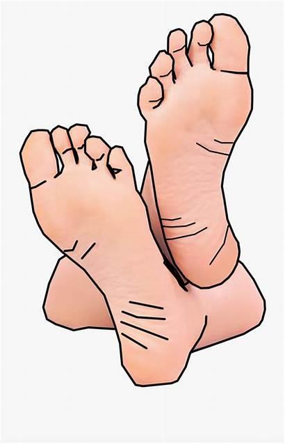 Feet Foot Toe Clipart Cartoon Hands Netclipart