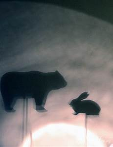 Forest Animal Shadow Puppets