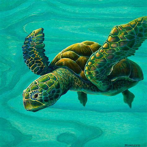 Sea Turtle Animated Wallpaper - beautiful sea turtles sea turtle animated wallpaper